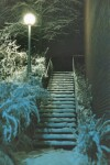 Winter Stairs - Washington State University